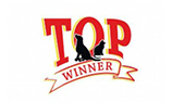 Top Winner logo