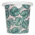 Sorbo Emmer Tropische Planten 5 liter