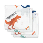 Jollein Hydrofiele Multidoek Small 70x70 cm Dinosaur  4 stuks