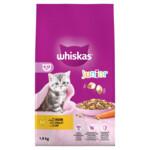 Whiskas Droog Junior Kip  1,9 kg