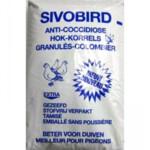 Sivobird Hokkorrels