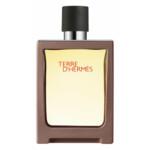 Hermes Terre Terre D'Hermes Refillable Eau de Toilette Spray