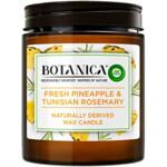 Air Wick Geurkaars Botanica Ananas & Tunesische rozemarijn