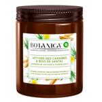 6x Air Wick Geurkaars Botanica Caribbean Vetiver & Sandalwood