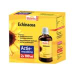 Bloem Echinacea