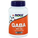 NOW Gaba 500mg