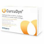 Metagenics Curcudyn