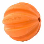 Dog Comets Ball Swift Tuttle Oranje