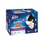 Felix Elke Dag Feest Kitten