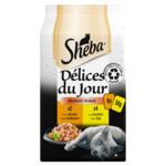 Sheba Delices du Jour Multipack Gevogelte