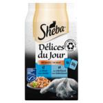 Sheba Delices du Jour Multipack Vis